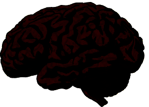 brain-512758_1280